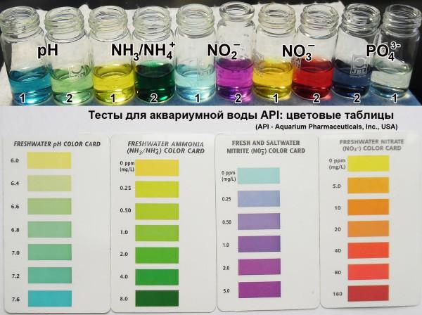 Тесты для воды своими руками