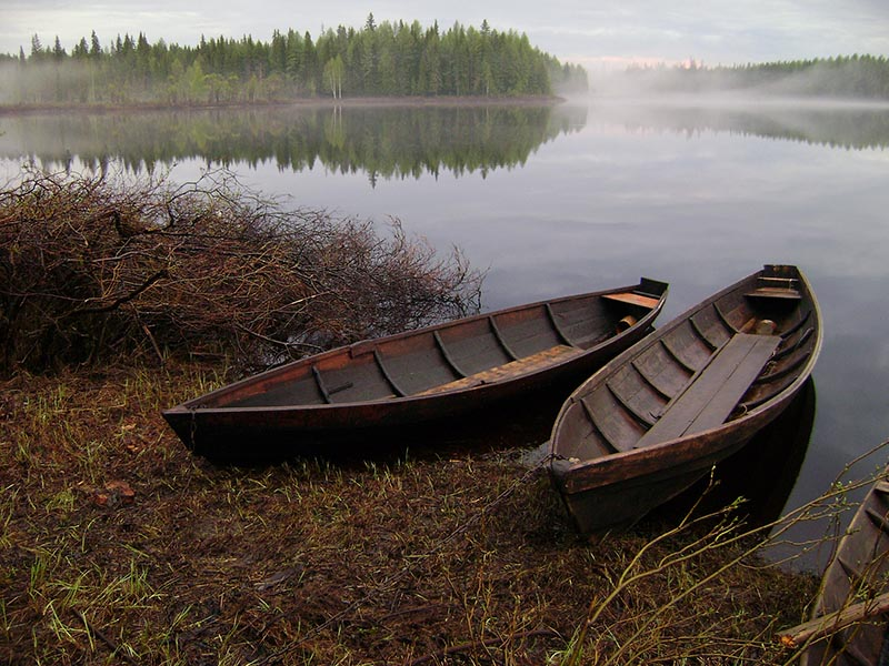 Рыбохозяйственные нормативы качества воды. Нормы качества воды водных объектов рыбохозяйственного значения