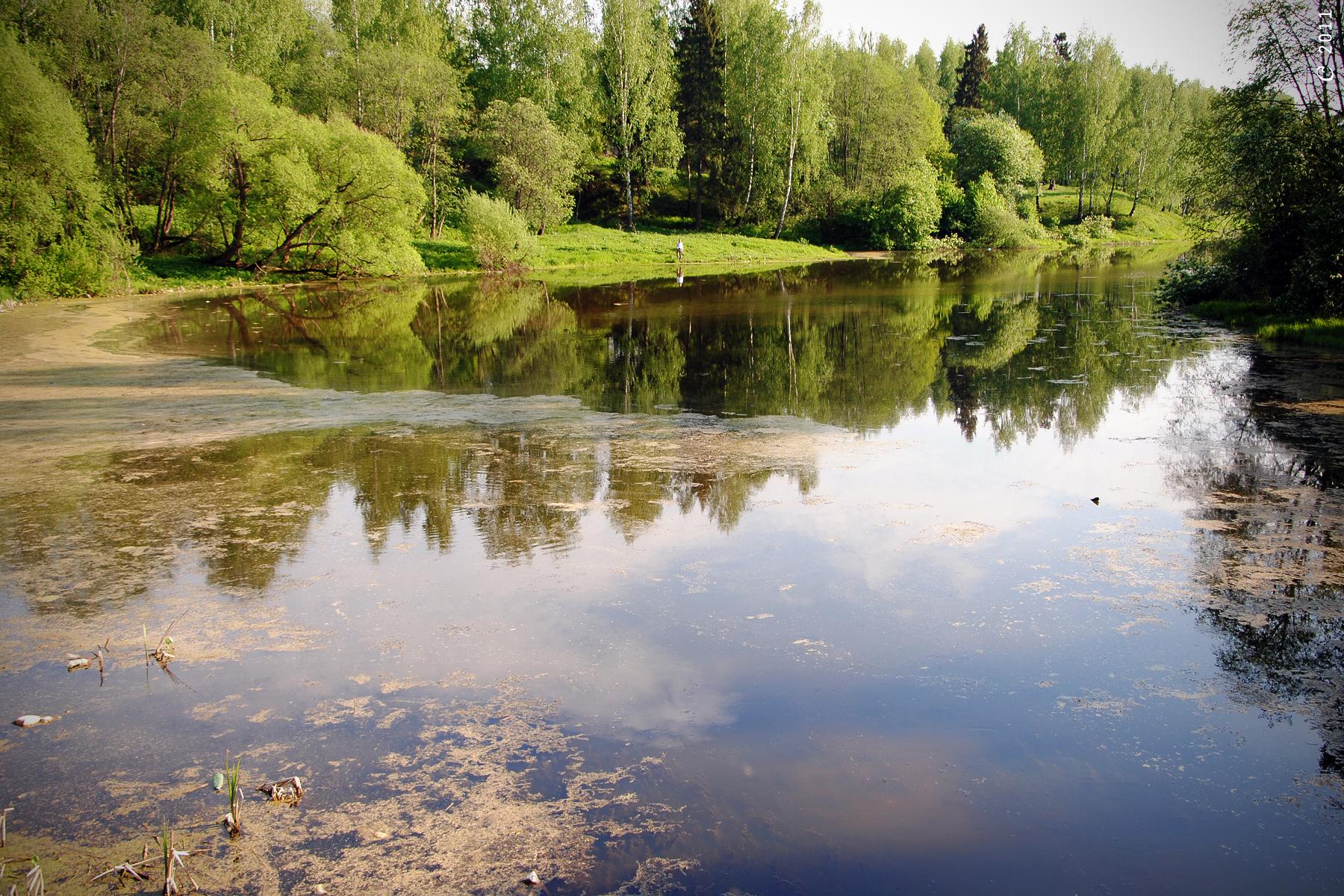 Воды открытых водоемов в Подмосковье. Качество вод