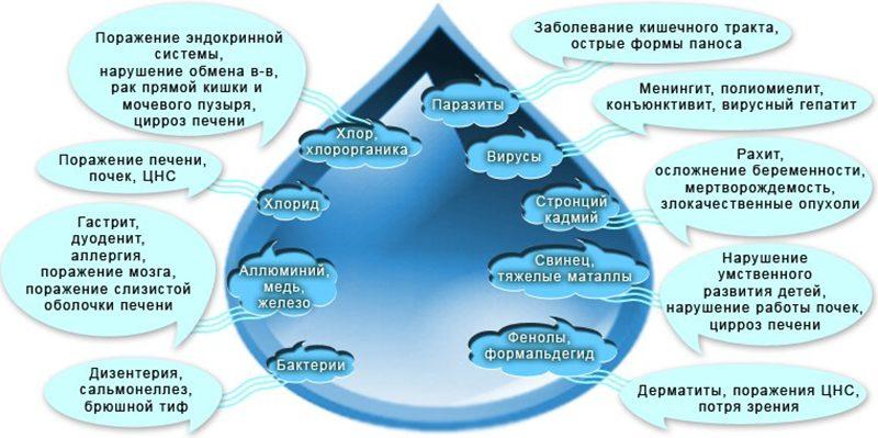 Поражение организма человека загрязнениями воды