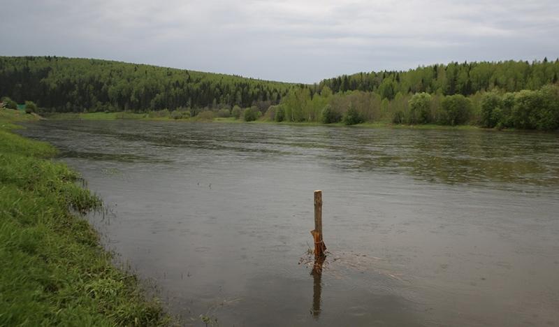 Источниками Cr 6+ в водоемах чаще всего являются сточные воды