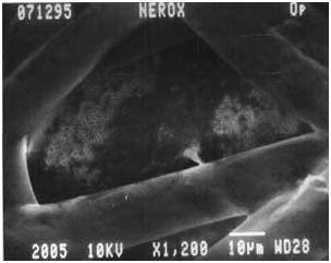 ламинированная мембрана
