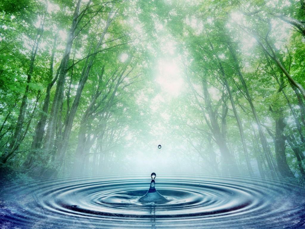Тест минеральной воды на качество (анализ)
