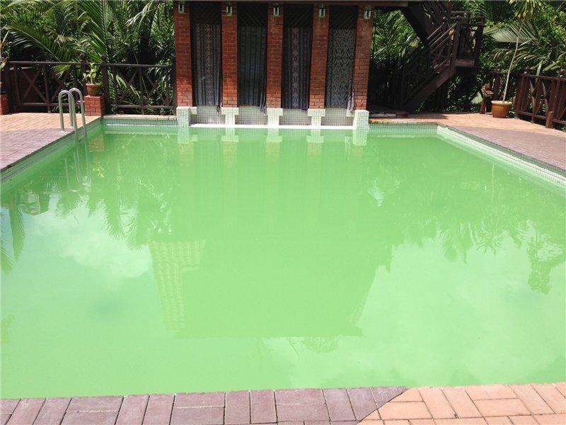 Мутная вода в бассейне. Проверка и контроль качества воды в бассейне